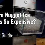 Why are Nugget Ice Makers So Expensive?