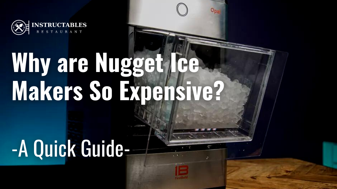 Why are Nugget Ice makers So Expensive
